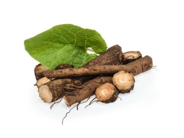 Экстракт масляный корня лопуха