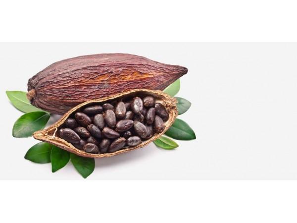 Эфирное масло какао, NEW